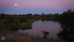 commute (Lisa Ouellette) Tags: fullmoon commute wetland americanriver americanriverparkway duskwater