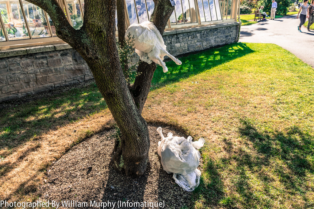 Tree Snails By Lucy O'Higgins - Sculpture In Context 2013