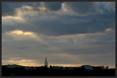 sunset ray (Zelda Wynn) Tags: trees sunset nature weather spring auckland rays crepuscularrays waitakereranges zeldawynnphotography