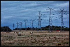 DSC03286 - Bales of hay (Derek Midgley) Tags: lines power farm australia powerlines hay bales chesterfield scoresby rx100