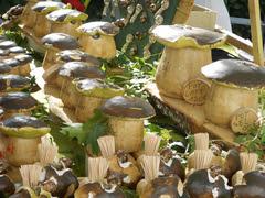 Onddoak_perretxikoak_egurrezkoak_001 (aiaraldea.com) Tags: egurra onddoak onddo santotxena perritxoak