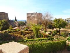 Granada : Alhambra - Chicken Tower and Garden . (sandromars) Tags: tower chicken garden torre e alhambra granada andalusia spagna giardino delle galline