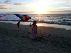 Rachel with kite @ sunset (kahunapulej) Tags: sunset usa kite hawaii rachel parrot maui macaw kihei