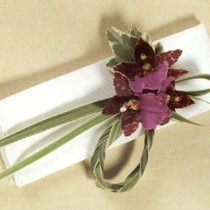 "Contemporary Napkin Decoration <a style=""margin-left:10px; font-size:0.8em;"" href=""http://www.flickr.com/photos/111130169@N03/11309052624/"" target=""_blank"">@flickr</a>"