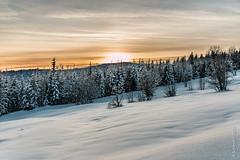 Marchairuz (smashingraph) Tags: sunset snow forest switzerland suisse sundown jura neige fort