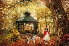 fairy tale... (Robin.Benea) Tags: autumn girl beautiful forest interesting woods fuji manipulation fairy fujifilm x20 absolutelyperrrfect mygearandme ringexcellence elements12