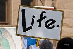 mygen_15 (jac malloy) Tags: life usa austin flickr texas state tx capital rally protest capitol abortion austintexas pro anti prolife austintx antiabortion atx jac malloy austinist defendlife texasrallyforlife