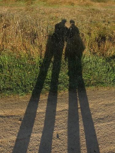 ombres à bretignolles