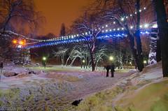 Photographers ... at work (dccalin05) Tags: park bridge night landscape nikon romania nightlandscape outstandingromanianphotographers ringexcellence dblringexcellence tplringexcellence romanescuparc infinitexposure