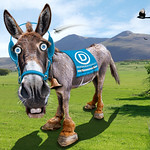 Democratic Donkey - Caricature, From FlickrPhotos
