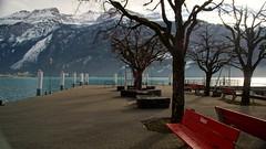 Om de bomen is heengebreid. (limburgs_heksje) Tags: schweiz brienz brienzersee swiss berner oberland zwitserland wintervakantie