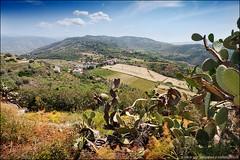 sicily (heavenuphere) Tags: cactus italy nature cacti landscape outdoors europe italia view hills sicily 1022mm sicilia gi messina tindari tyndaris