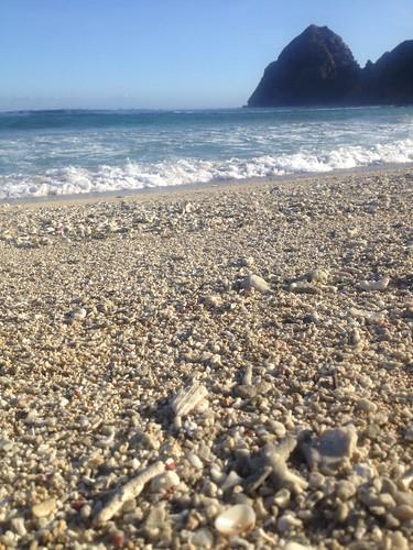 Tropi beach
