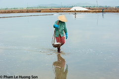 _DSC6131-Edit.jpg (womofa) Tags: travel sea summer people woman sunlight white lake color reflection industry nature water pool field hat work pond colorful asia mine vietnamese crystal farm background labor traditional spice salt culture peaceful flake sunny lagoon vietnam salty pile tropical mineral worker pan farmer manual tradition agriculture saline carry conical reflects evaporation ingredient salted nhatrang bamboobasket shoulderpole