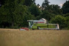129A6111.jpg (Fotos aus OWL) Tags: landwirtschaft landschaft ernte getreide dreschen