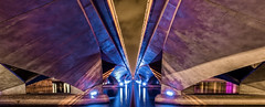 Under the Bridge (alexhfotoblicke) Tags: asia citiy word night bridge nikon d600 singapur