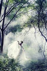 (MingWs) Tags: wedding dress nikon d5100 outdoor dream forest smoke green