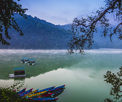Boats on the lake, Pokhara (sequoiaseed) Tags: nepal pokhara boats lake lakeside himalayas morning sunrise fog fishing colors