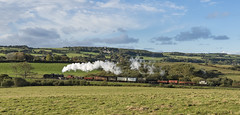 Freight in the Landscape (powern56) Tags: swanage swanagerailway dorset corfecommon kingston landscape 7f 53809 railway train freighttrain steamlocomotive railwayheritage sd somersetdorsetrailway