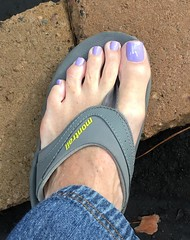 Ellen Gold - Zaza  From Brazil! (toepaintguy) Tags: male guy men man masculine boy nail nails fingernail fingernails toenail toenails toe foot feet sandal sandals polish lacquer gloss glossy shine shiny sexy fun daring allure gorgeous lavender ellen gold creme brazil dear friend eva