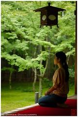 Under the lantern (Koto-in temple, Kyoto) (Damien Douxchamps) Tags: japan  japon kansai  kinki  kyoto   northern north  daitokuji templecomplex temple     koutouin kotoin  zengarden   subtemple  tatchu