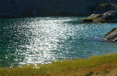 Eintauchen in die Glitzerwelt der Alpen (balu51) Tags: wanderung landschaft bergsee see trkis glitzern gegenlicht backlight glittering water lake mountainlake teal rocks grass autumn fall hiking swissalps graubnden bergn september 2016 copyrightbybalu51