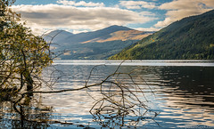 A calm day on the Loch (www.theaperturegeek.com) Tags: loch tayside scotland water calm bright sky clouds hills trees tree still reflection shimmer branch twigs twig adventure travel beauty nature landscape landscapes scottish canon 70d sigma 1770 scotspirit highlands highland leaves leaf blue green colour alone travelphotography tranquil serene peaceful
