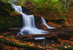 Autumn Cascade (Satie Sharma) Tags: autumn fall colors forest leaves trees waterfall stream cascade ricketts glen pennsylvania usa