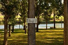 610_0821_2048 (a.marquespics) Tags: walkthedog passearocão parque park proibido forbidden jardim garden outono autumn pontedesor ribeiradesor alentejo altoalentejo portalegre portugal nikon d610 28105mmf3545d arvoredo grove placa sinalética signboard tabuleta sign