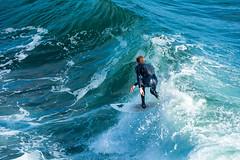 ArchitectGJA-7698.jpg (ArchitectGJA) Tags: lighthousepoint surfing californiababy hurley wetsuit santacruz ripcurl xcel lighthousefield california cliffs beach marineanimals coast mermaid waves streetphotography patshaughnessy surfingsteamerlane coastlife steamerlane oneill montereybay