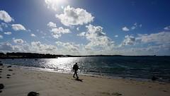 Bretagne, walking along the sea (claude 22) Tags: bretagne breizh plage beach sand soleil couchant randonnee walking nature coast sea mer france trgor armor sun clouds nuages ctesdarmor trgastel landrellec ray