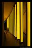 Louis Vuitton Foundation, Paris (Marc Funkleder Photography) Tags: louisvuitton lvmh foundation yellow frankgehry olafureliasson insidethehorizon reflection contrast shadow geometry symetrical symetry geometrical boisdeboulogne jardindacclimatation paris contraste réflection géométrie géométrique symétrie symétrique ombre jaune nikon nikond750 2470mm28 abstract neuillysurseine bordure photo diagonale fond noir abstrait black people minimalisme texte intérieur