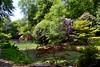 japanese pond and bridge