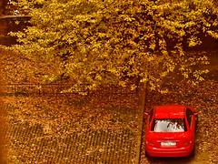 St. Petersburg. Russia (zykepMaH) Tags: autumn stpetersburg russia
