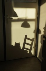 At home I (Elisa1880) Tags: thuis home schaduw shadow sun zon lamp tafel stoel poes kat cat koschka table chair
