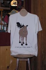 St. John's, T-Shirt (Joseph Topping) Tags: newfoundland canada winter