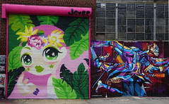 Welling Court Mural Project - Astoria, Queens, NYC (SomePhotosTakenByMe) Tags: usa urlaub vacation holiday nyc newyork newyorkcity america amerika queens astoria mural wandbild kunst art graffiti wellingcourt wellingcourtmuralproject muralproject outdoor letskeepthetropicalvibes jcorp delvalle estebandelvalle streetartpuppet