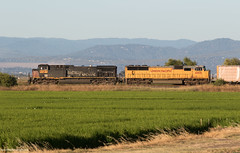 Patched Southern Pacific AC44CW (Jake Miille) Tags: unionpacific unionpacificrailroad railroad freighttrain manifest trains southernpacific southernpacificheritage patchedsp richvalecalifornia upvalleysubdivision