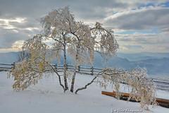 Automne en Savoie.