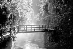contemplacin (ariquelme693) Tags: naturaleza puente ro eslovenia calma relax xt10 xf1855