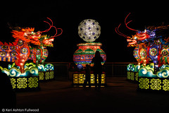 _MG_2513 (lemonredox) Tags: halloween 2016 luminate gilroy gardens lumination gilroygardens luminationgilroygardens lights asian chinese bejeweled qilin welcome gate gateway of good fortune nineheaven pagoda guardian lions cranes with moon ming vases palace lantern vase imperial peacocks carp jumping over the dragon ceremonial drums peach trees pathway to prosperity flower forest knots terracotta warriors temple heaven panda sanctuary fairies tang dynasty marketplace lampposts great wall china arches apsaras dream red chamber faces playful porcelain zodiac