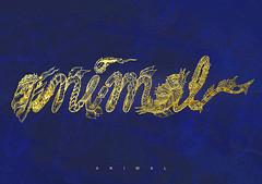 ANIMAL (dashang.tiwari1) Tags: doodle art doodleart sketching comics cartoons quirky new blue gold awesomeness animal wild
