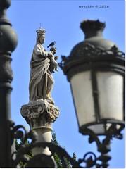 Virgen del Rosario.Virgin of the Rosary. (ironde) Tags: virgen rosario cádiz cadiz cadix spain españa espagne andalousie andalucía andalusia ironde 2016 jon errazkin nikond7000 statue estatua marble mármol paloma lamp farola azul blue cielo sky virgendelrosario