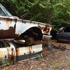 DSC_0393 v2 (collations) Tags: ontario mcleansautowreckers autowreckers wreckers automobiles autos abandoned rockwood derelict junkyards autograveyards carcemeteries