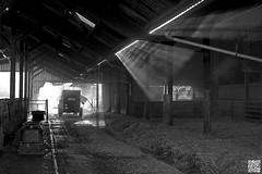 La ferme (Alex..H) Tags: bergerienationale rambouillet rayon soleil sun lignt lumire rais ferme bw