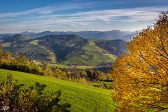 Herbsttag (hanspirkie) Tags: herbsttag outdoor landschaft natur baum fauner flowers laub himmel gebirge herbst berg vorgebirge abhang austria niederösterreich