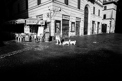Rome, Italy 2016 (Lucio Frabotta) Tags: leicaq walking woman bw shadow blackandwhite people leica persone roma rome street italia streetphotography streetlife italy blancoynegro photography summilux biancoenero monochrome noiretblanc monocromo monocrome mono lazio campodefiori ngc 28mm