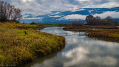 Serpentine Pond (kensparksphoto) Tags: shuswaplake britishcolumbia salmonarm canada reflection clouds mountains november