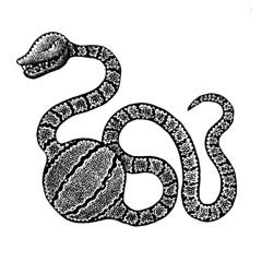 Breakfast (Don Moyer) Tags: breakfast snake meal ink drawing sketchbook moyer donmoyer brushpen