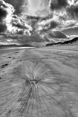 Will the circle be unbroken (pauldunn52) Tags: beach north uist black white art creation marram grass